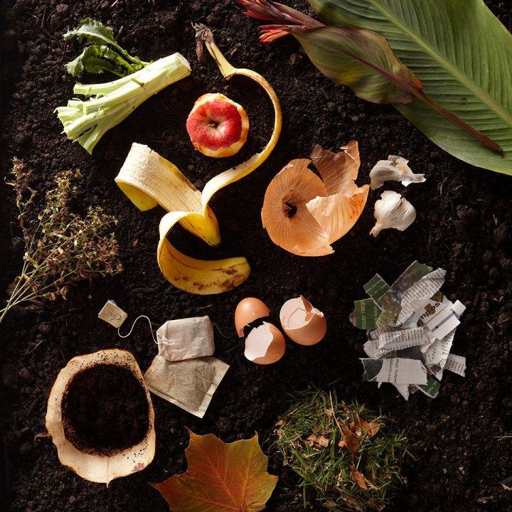 Productos que puedes utilizar para hacer composta encasa