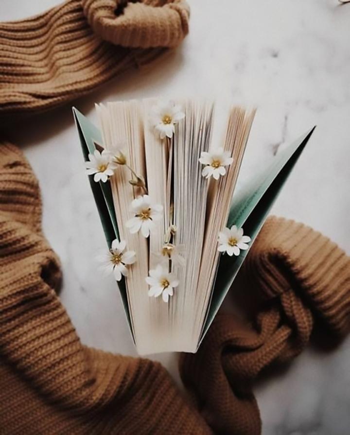 10 libros para festejar el Día Internacional delLibro